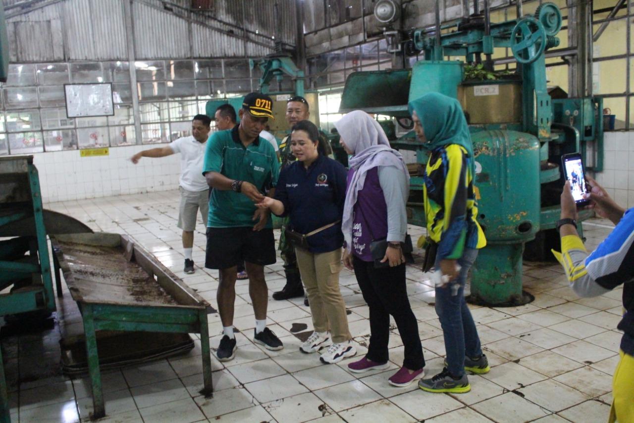 Ketua Persit Kunjungi Pabrik Teh Di Perusahaan PTPN IX Semugih